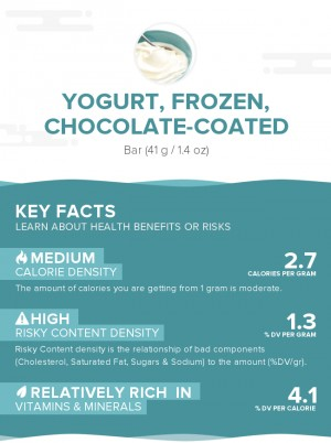 Yogurt, frozen, chocolate-coated