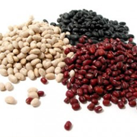 Beans, Cranberry (roman), Canned