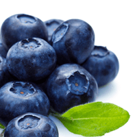 Blueberries, Canned