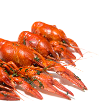 Crayfish, Farmed, Moist Heat