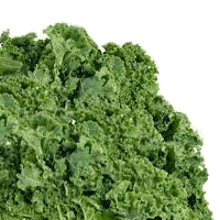 Kale, Boiled, Without Salt