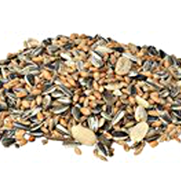 Seeds, Pumpkin